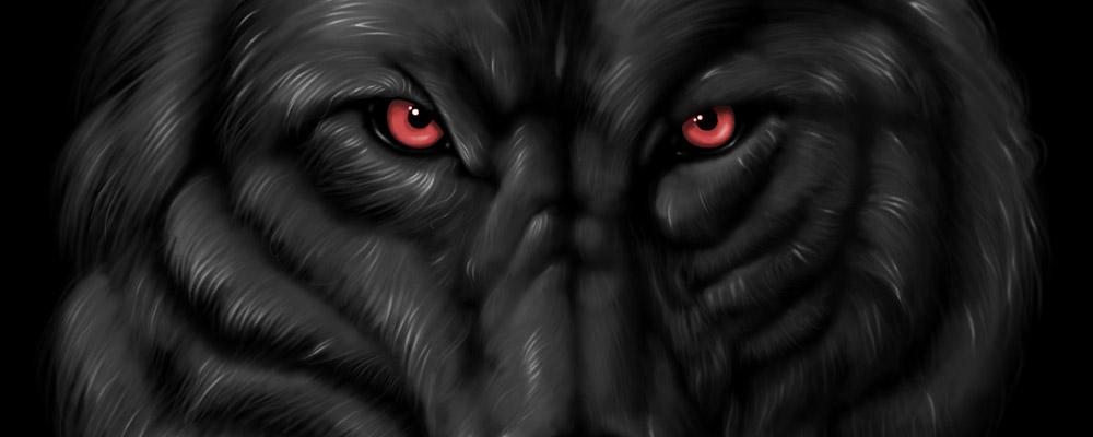 Và con sói đen huyền thoại đã ngủ yên
