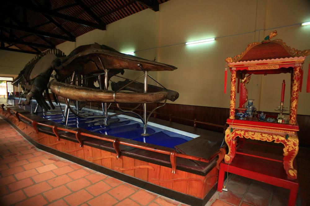 Tìm hiểu tục thờ cá voi của cư dân miền biển Việt Nam