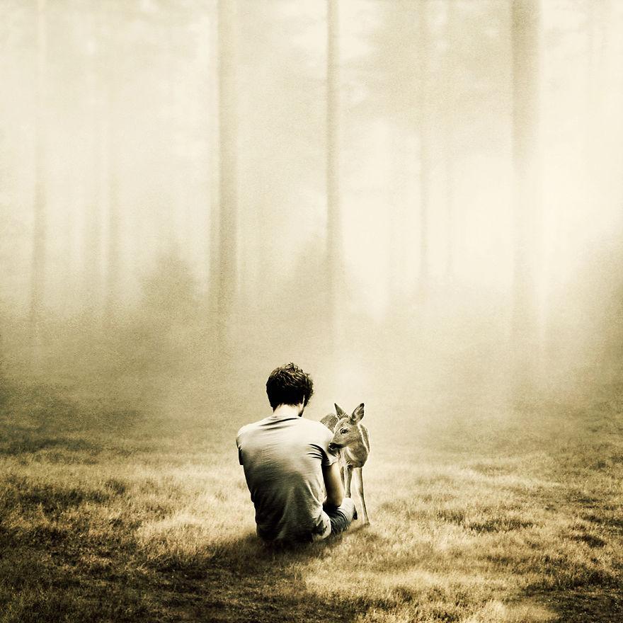 Bộ ảnh dành cho những tâm hồn cô đơn