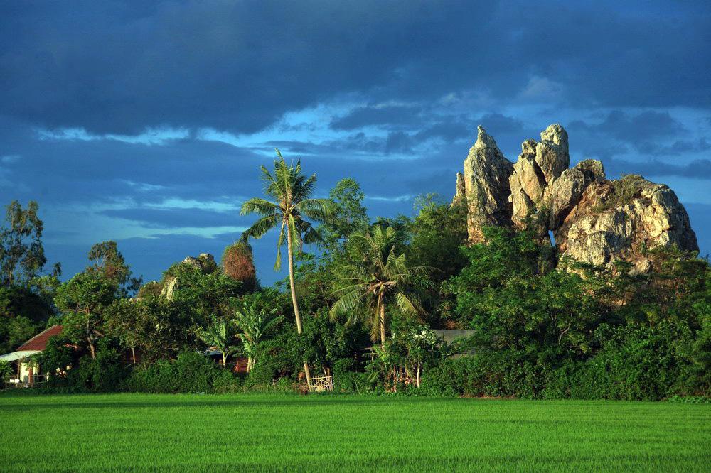 Chùm ảnh: Gành đá Hòa Thắng – kỳ quan giữa đồng lúa ở Phú Yên