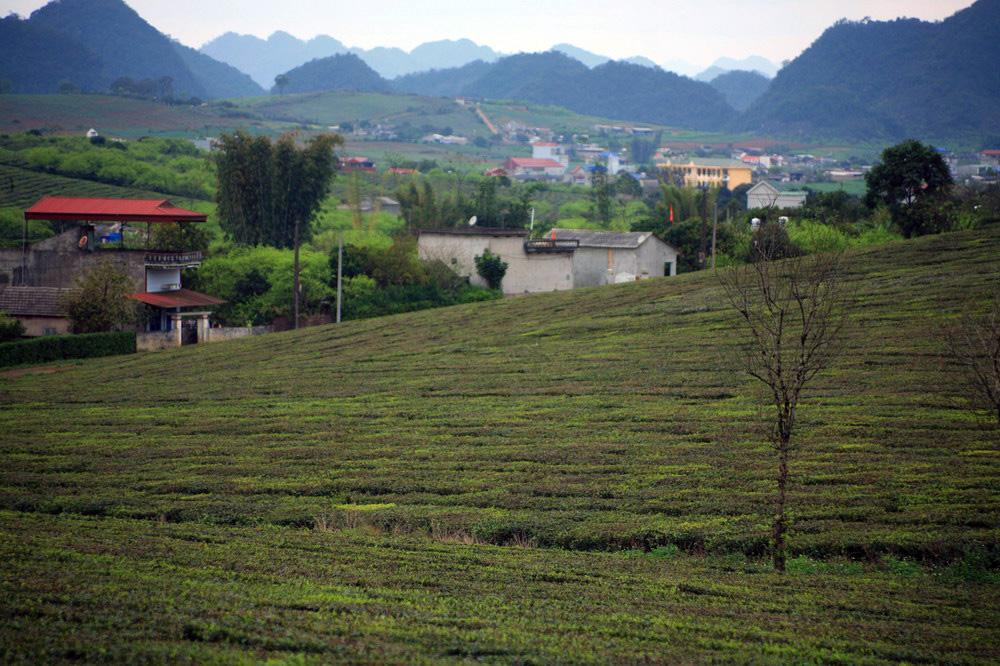 Chùm ảnh: Điểm danh các thị trấn đẹp nhất Việt Nam