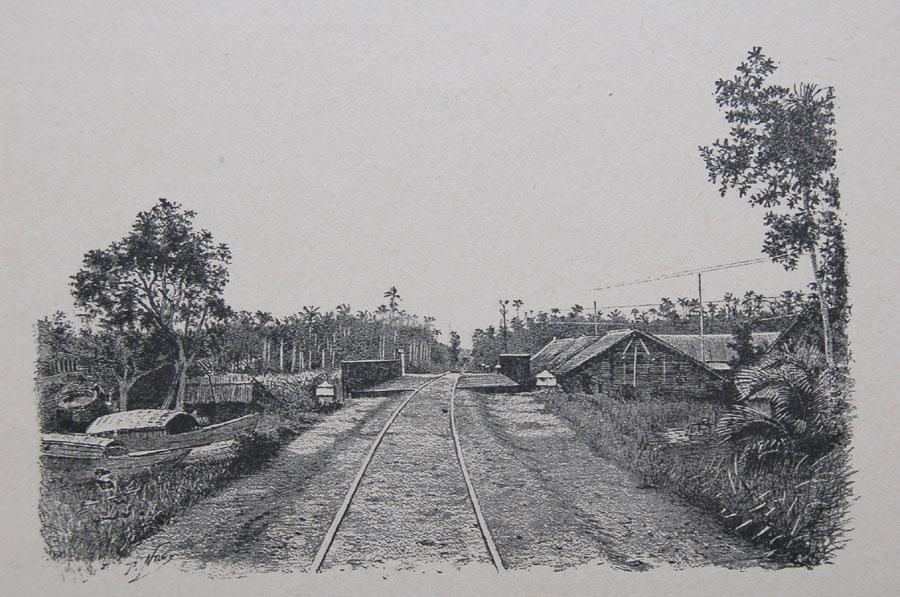 Viet Nam thoi thuoc dia trong anh phuot thu Phap (2)-Hinh-8