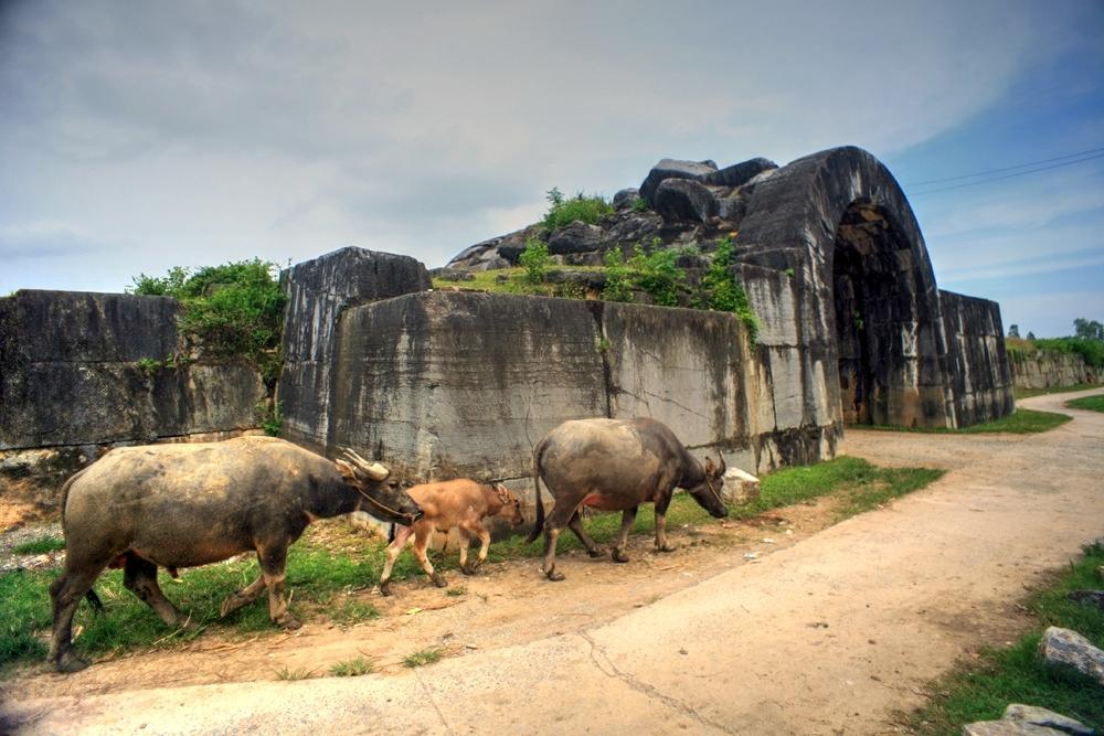 Hồ Quý Ly đầu hàng vì hèn hay muốn bắt chước Việt vương Câu Tiễn?