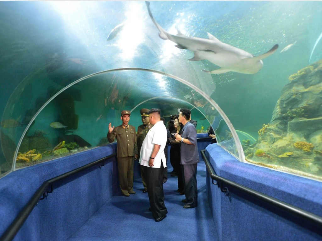 Khám phá thành phố du lịch biển kiêm... bãi thử tên lửa Triều Tiên - ảnh 14