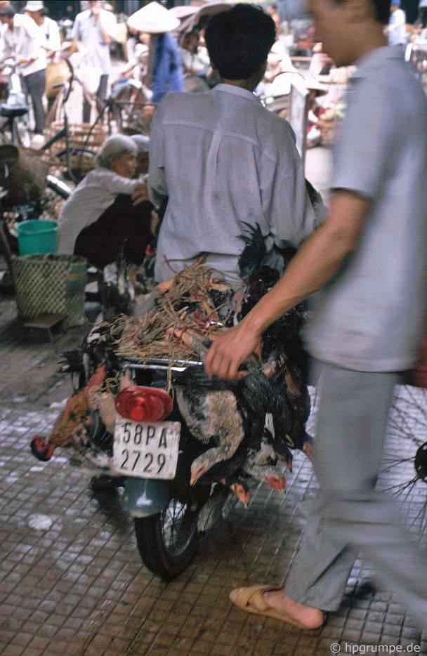 Saigon: Chợ Bến Thành, vận chuyển gia cầm