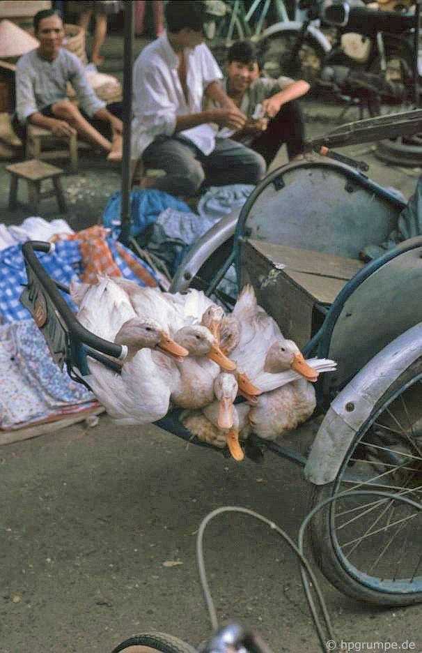 Sài Gòn: Chợ Lớn - Chợ Bình Tây, vận tải