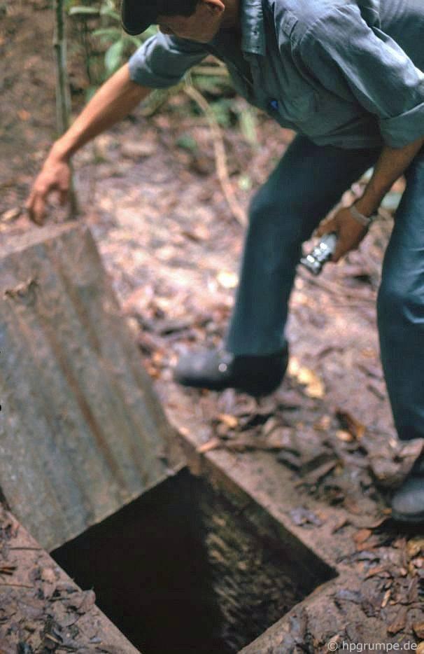Củ Chi: Ngụy trang vào đường hầm