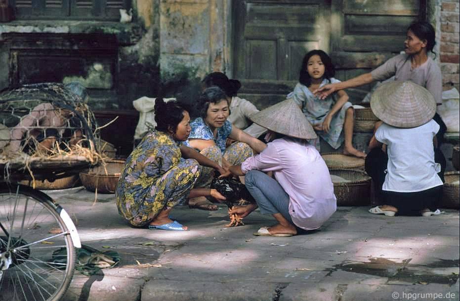 Hà Nội-Altstadt: Geflügelhändler