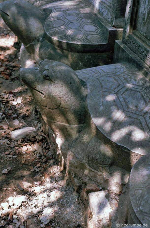 Hà Nội - Văn Miếu: Đá rùa