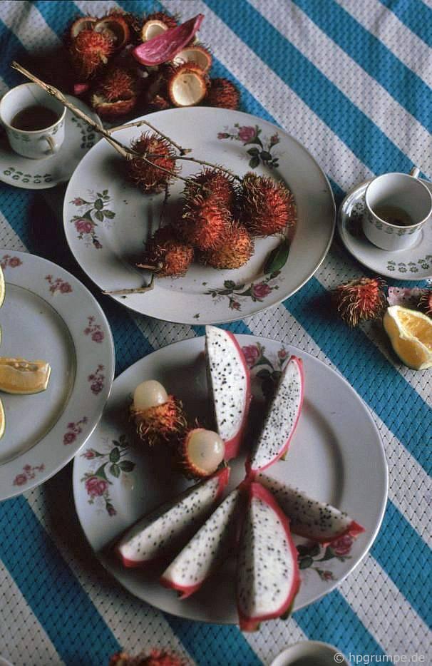 Mỹ Tho: Đảo Mê Kông, Rambutan và Dragon Fruit