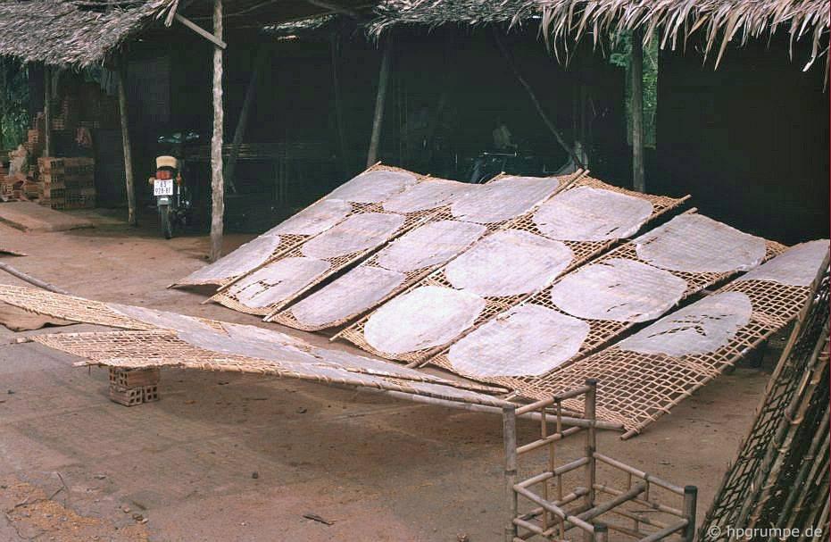 Gạo được sấy khô trên đường phố