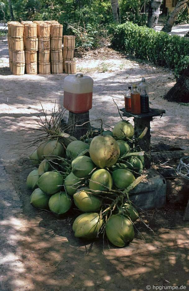 Trên bán đảo Lăng Cô: bán củi, dừa và xăng