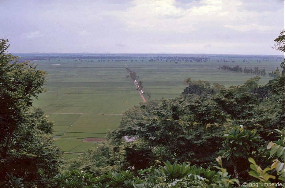 Ruộng lúa ở đồng bằng sông Hồng