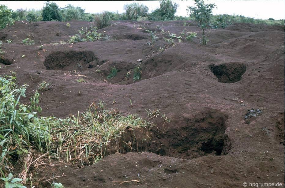 Khe San: Đất bị tàn phá