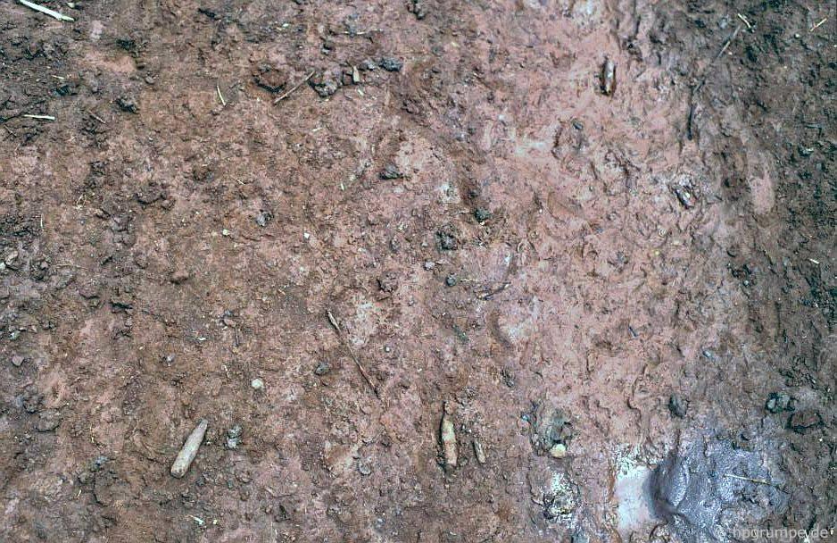 Khe San: Mặt đất bị đạn