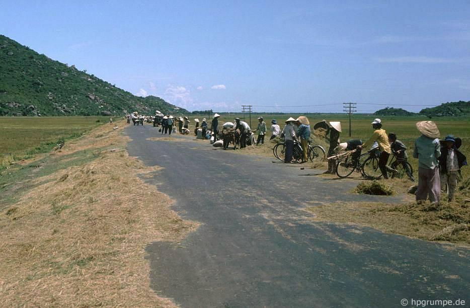 Quốc lộ 1 phía Nam Qui Nhơn làm sàn đập