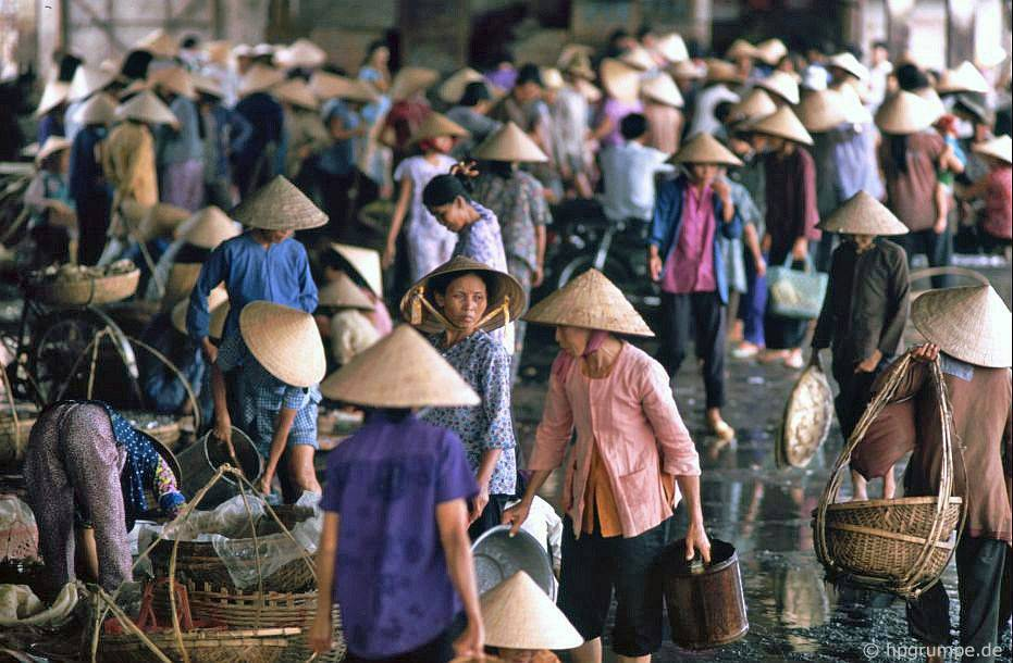 Nha Trang: chợ cá