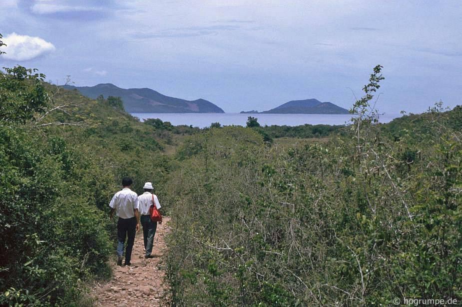Đảo Hòn Miễu: tăng