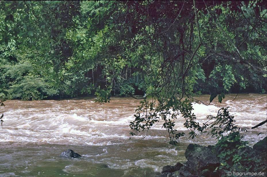 Sông từ thác Dray Sap