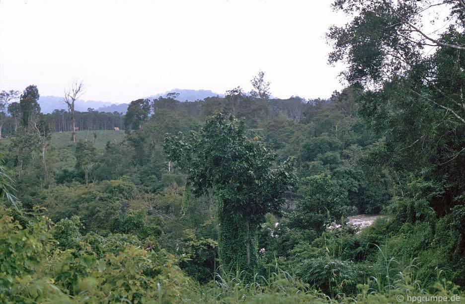 Phong cảnh tại Dray Sap