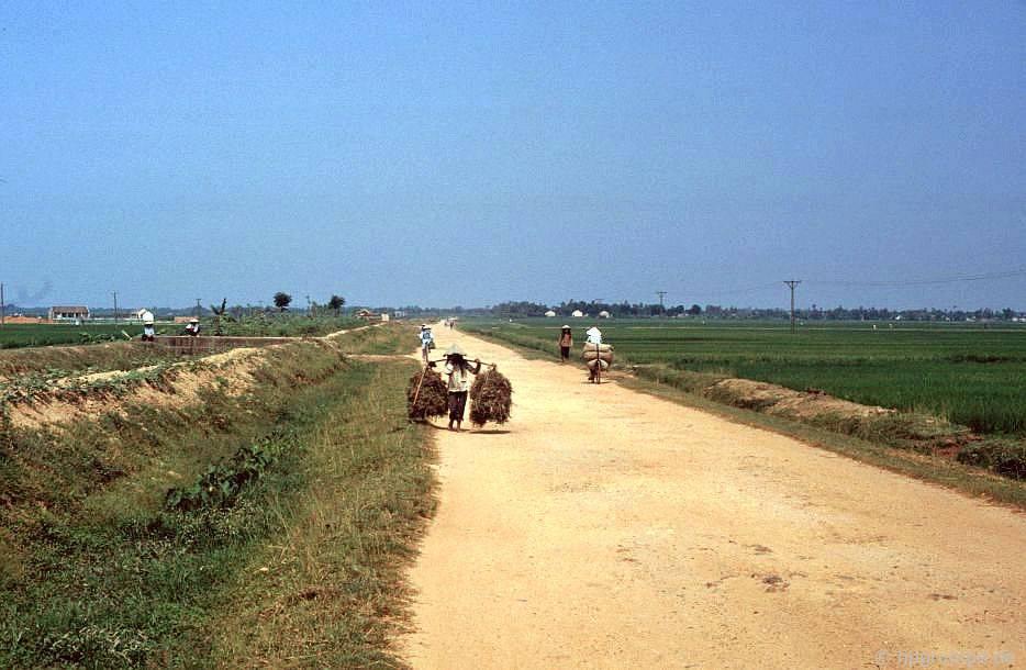 Con đường giữa Hà Nội và Đông Hồ