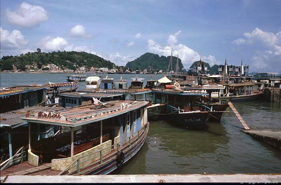 Vịnh Hạ Long: Thuyền