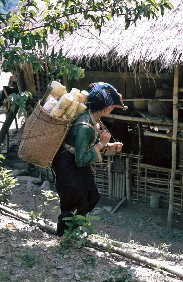 Người phụ nữ Thái Lan với Kiepe đầy măng