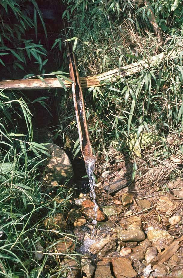 Sa Pa: ống nước bằng ống tre
