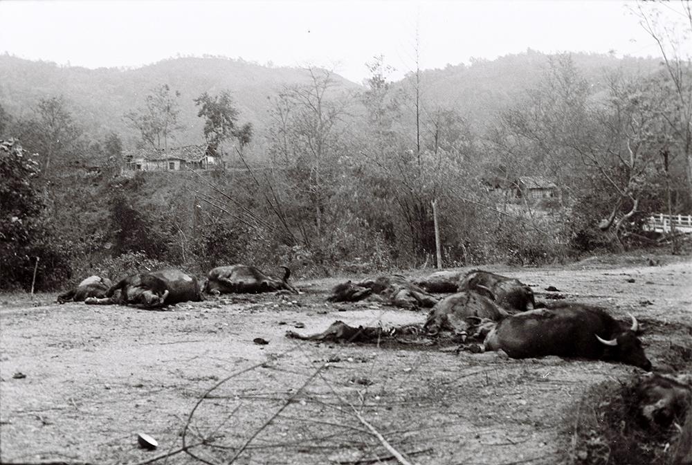 Bài học đau đớn từ 'đội quân thứ 5' của Trung Quốc trong cuộc chiến tranh 1979