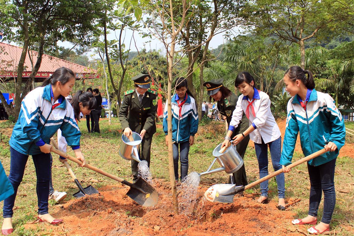 Lịch sử phong trào Tết trồng cây
