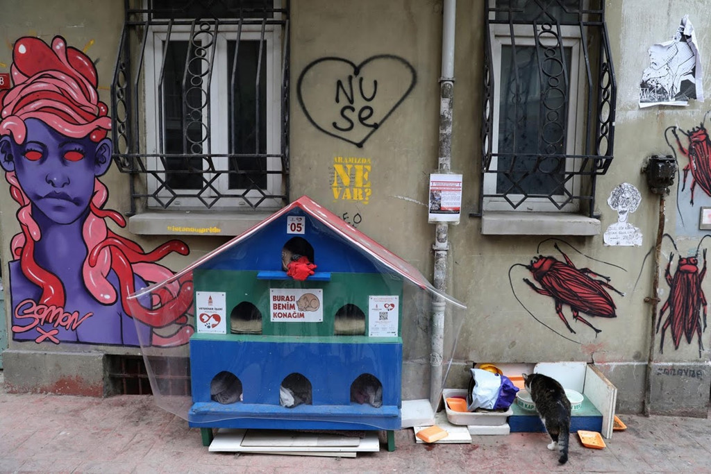 Istanbul: Thanh pho meo chia doi bo Au - A hinh anh 5