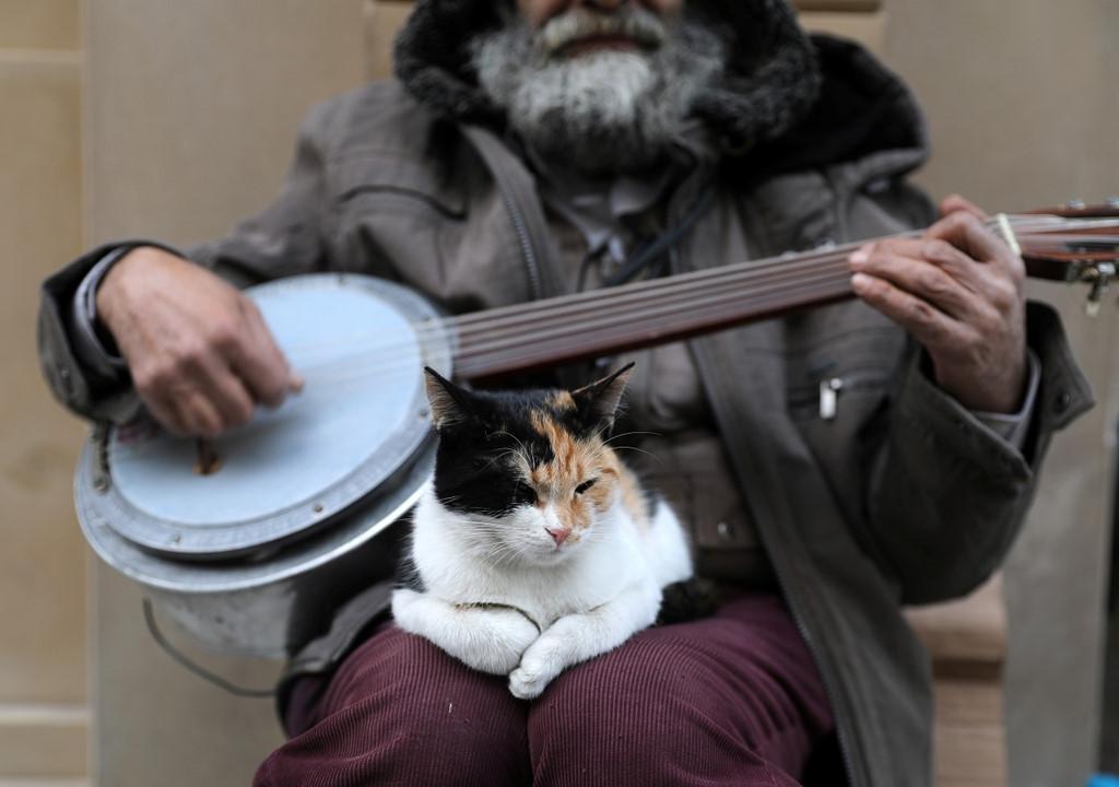 Istanbul: Thanh pho meo chia doi bo Au - A hinh anh 7