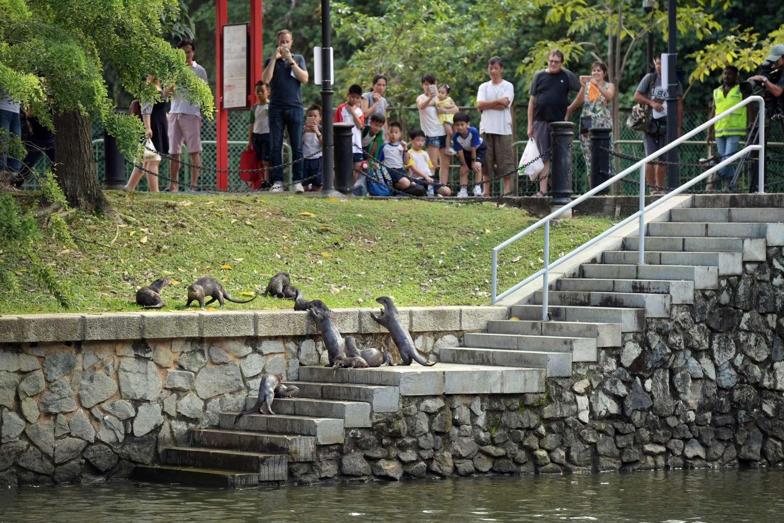 Kỳ công cải tạo 'dòng sông phong thủy' của chính quyền Lý Quang Diệu