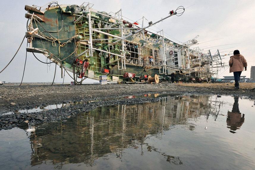 Một con tàu đánh bắt mực trôi dạt vào sâu bên trong đất liền ở thành phố Hachinohe, tỉnh Aomori. Ảnh: Reuters
