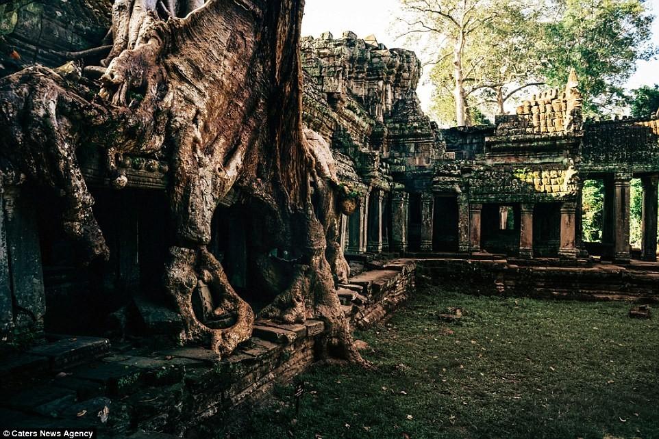 Đền Ta Prohm càng trở nên nổi tiếng hơn sau khi xuất hiện trong bộ phim Tomb Raider.