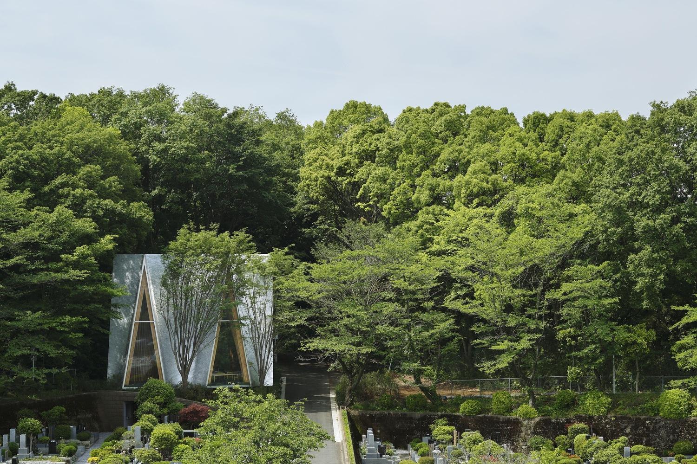 Từ câu chuyện về một cánh rừng nguyên sinh nằm trong Đại học Saitama