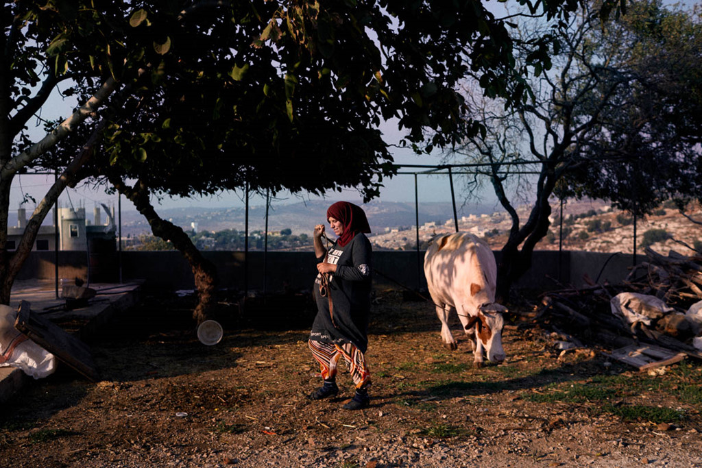 Nguoi Syria song luu vong tai Lebanon: Nhung manh doi trai nguoc hinh anh 9