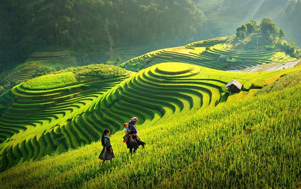 Sự bế tắc của tính sáng tạo trong nghệ thuật nhiếp ảnh ở Việt Nam