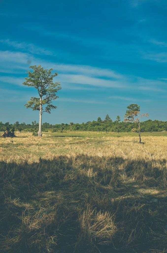 5 ngoi den huyen bi trong quan the Angkor hinh anh 13