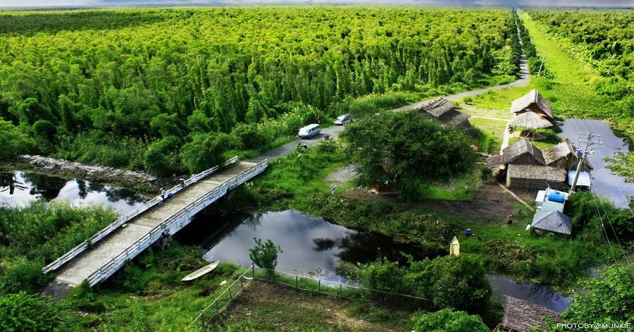 'Đất rừng phương Nam' đã trở thành cổ tích