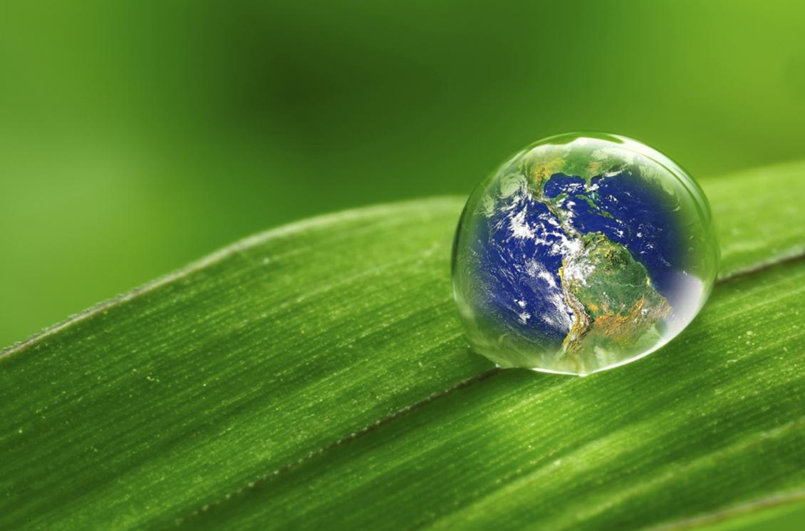 Vài nét về sự phát triển của triết học sinh thái hiện nay