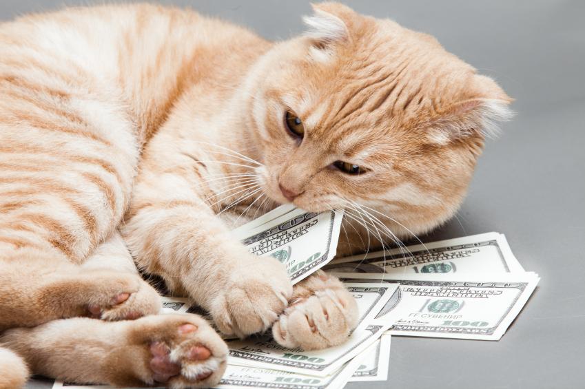 Những sai lầm về tiền bạc có thể mắc phải ở mọi lứa tuổi