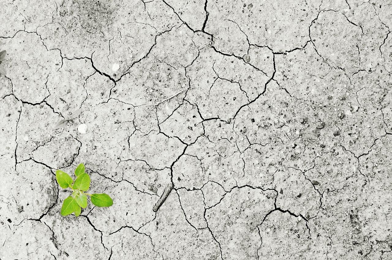 Một số điều cần biết về ô nhiễm và suy thoái đất đai