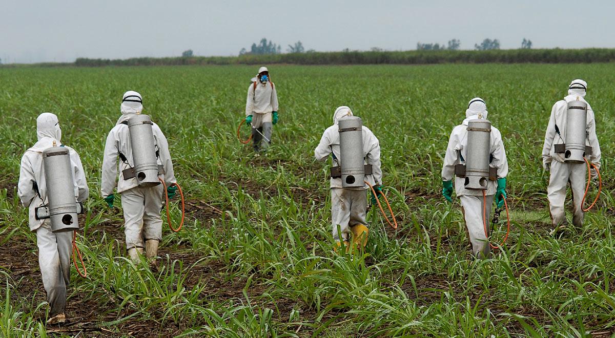 Điểm danh những sản phẩm khiến thế giới ghê rợn của Monsanto