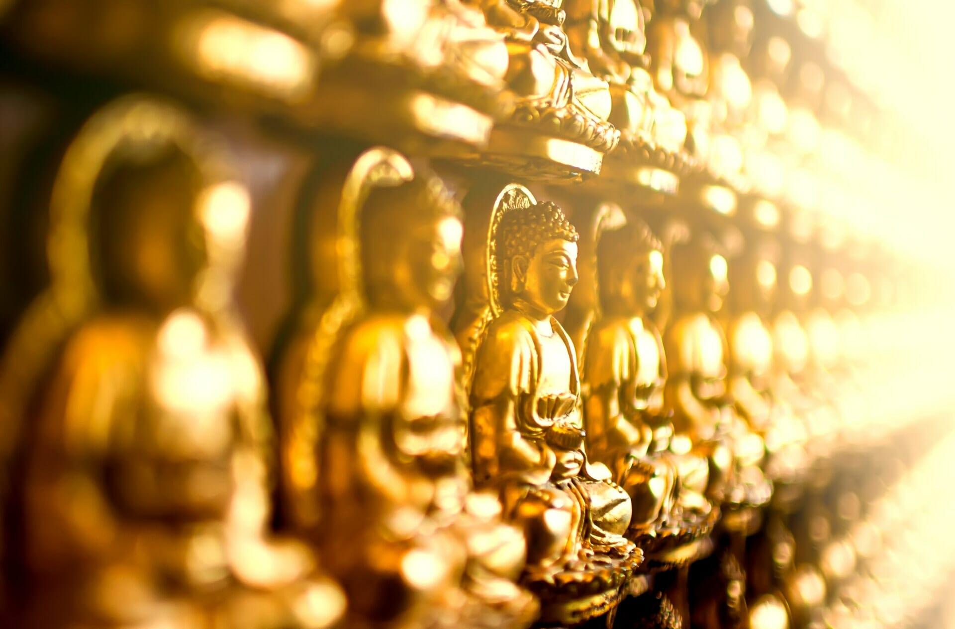 Sigmund Freud và Phật giáo – Sự tương đồng đến kinh ngạc