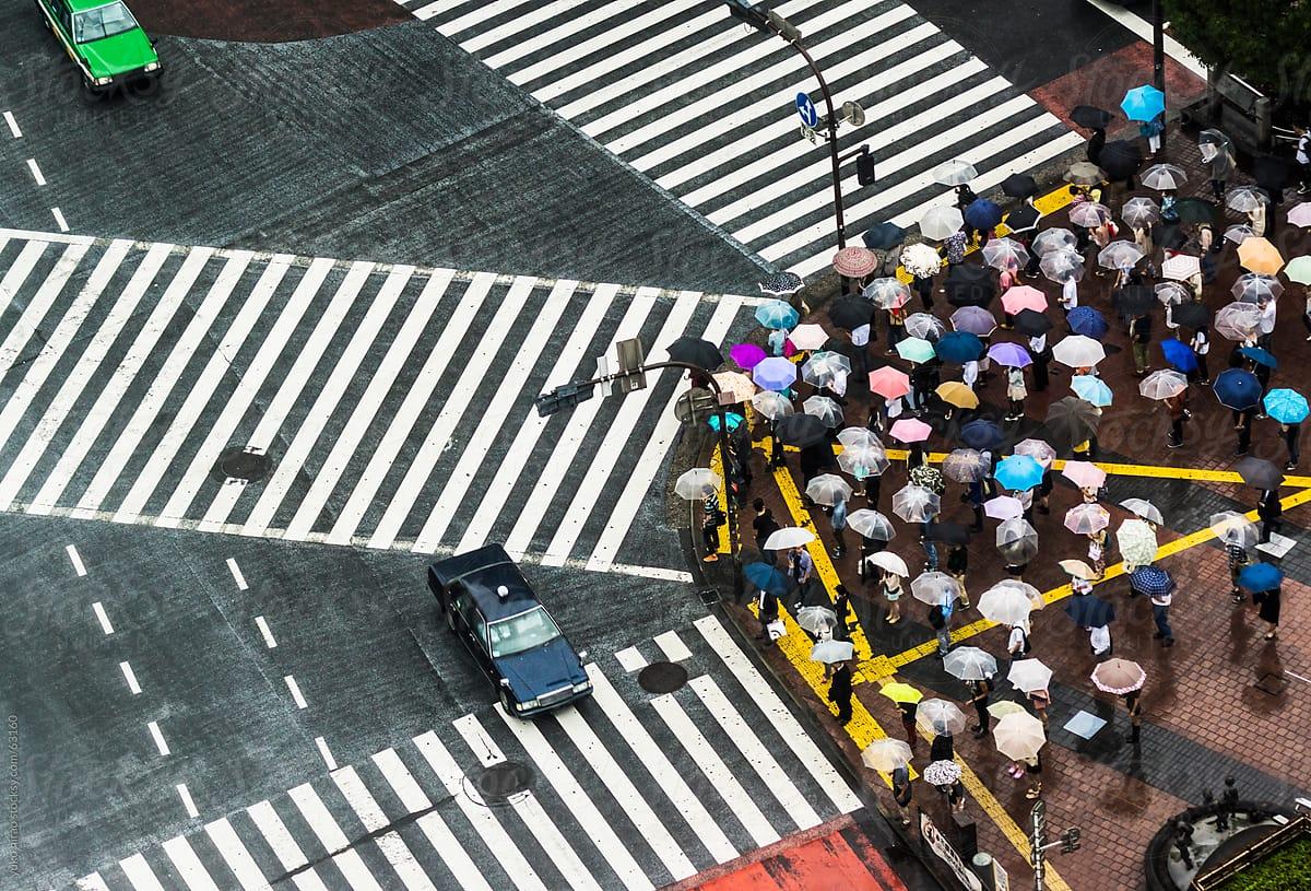Một cái nhìn về tính tự giác của người Nhật Bản