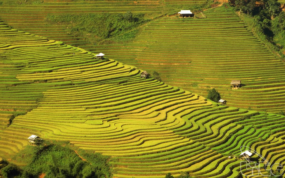 ASEAN với những thách thức bảo vệ môi trường để phát triển bền vững