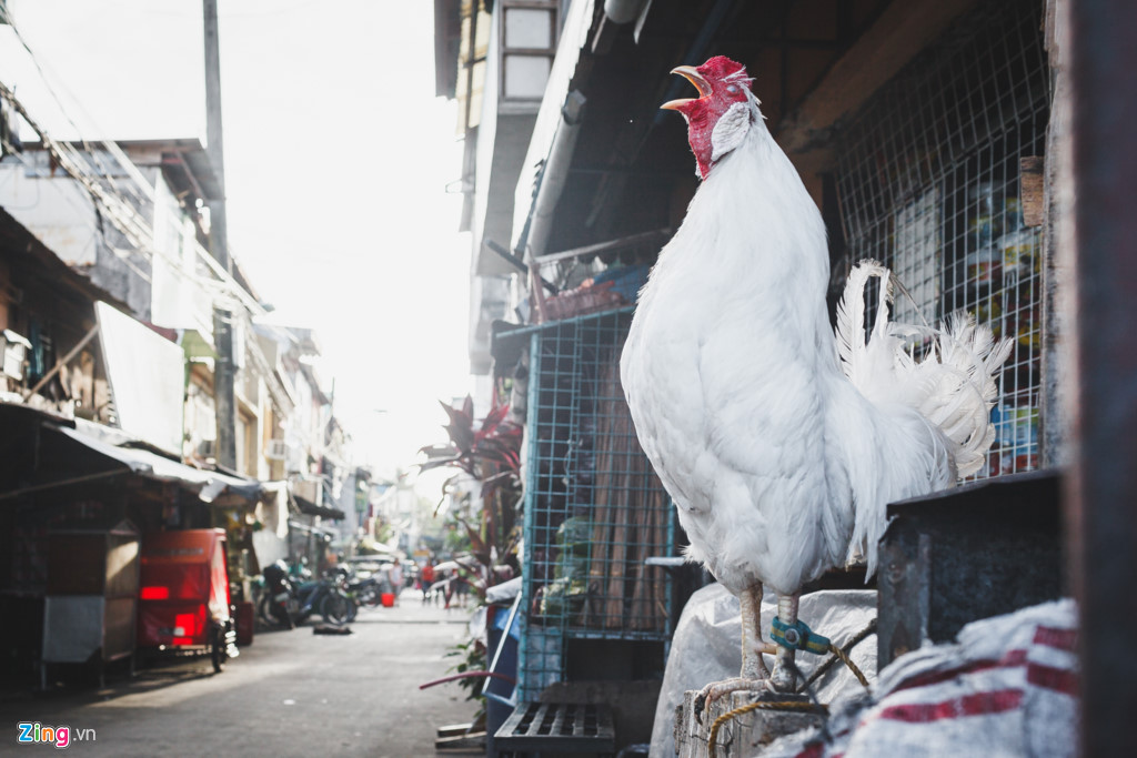 Manila - noi khoang cach giau ngheo xa voi voi hinh anh 1