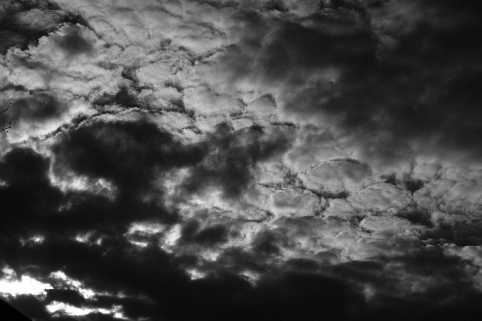 Chaconne cung Sol thứ của Vitali – bản nhạc 'đau thương nhất mọi thời đại'