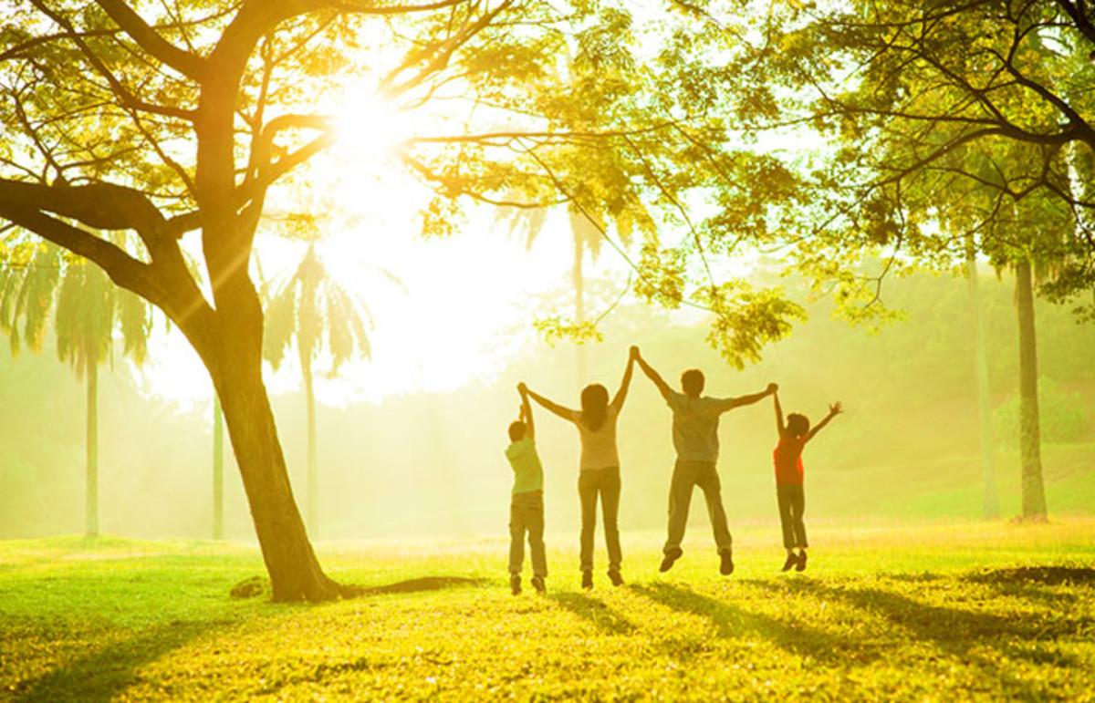 5 cái phúc lớn nhất cuộc đời tưởng xa xôi mà gần ngay bên cạnh
